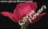 The Cyprus Florists Online -- flower abd gift delivery throughout Cyprus
